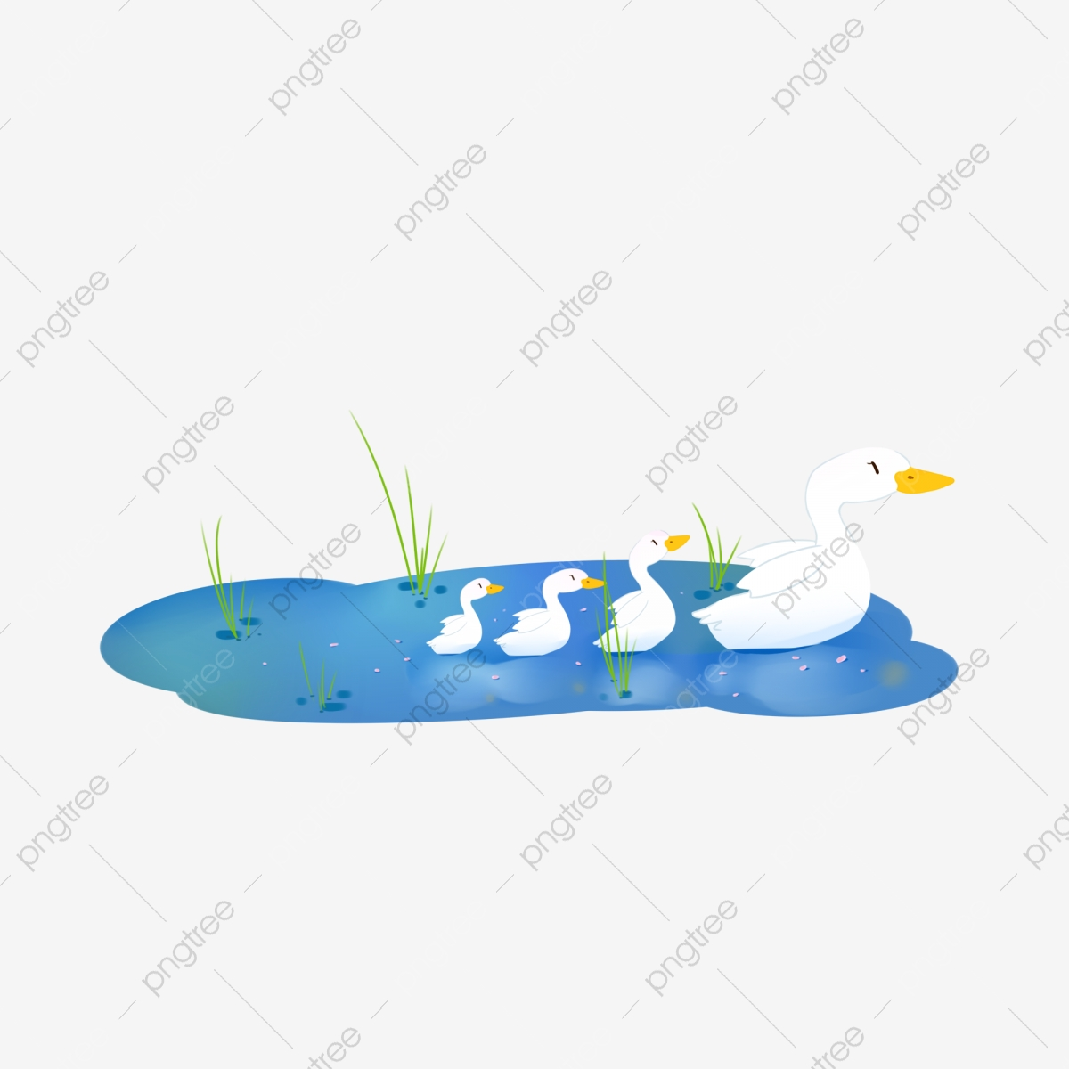 Duckling clipart group duck. Summer lovely mother