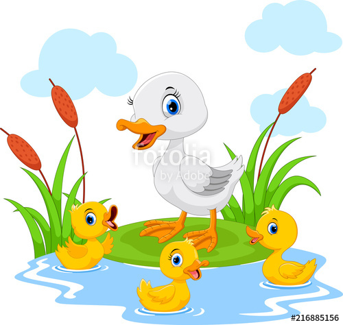 Duckling clipart group duck. Mother swims with her