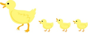 Duckling clipart line. Free image