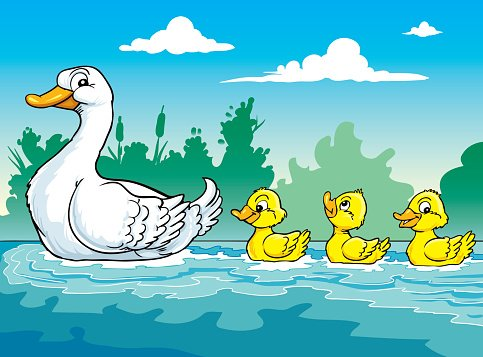 Duckling clipart mama duck. Mother and the three