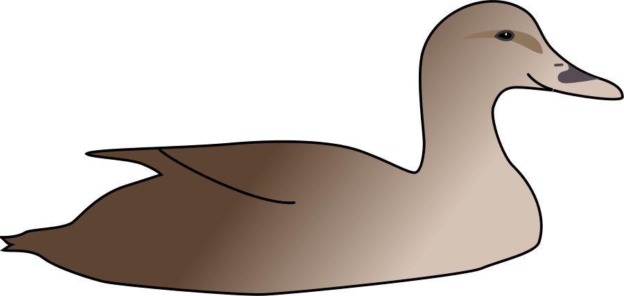 Duck swimming pencil and. Ducks clipart kid clipart