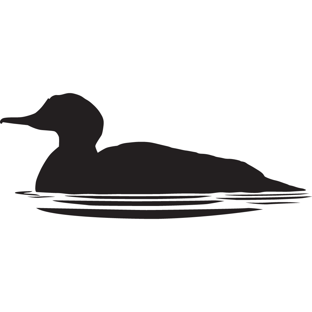 Nest clipart duck nest. Common merganser overview all