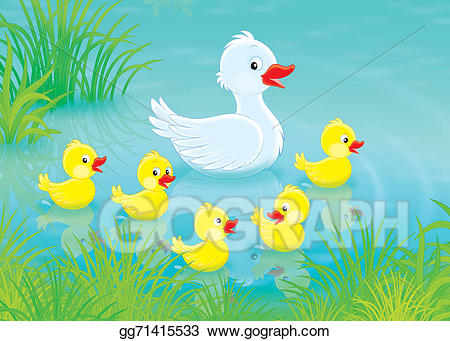Duckling clipart small duck. Stock illustration and ducklings