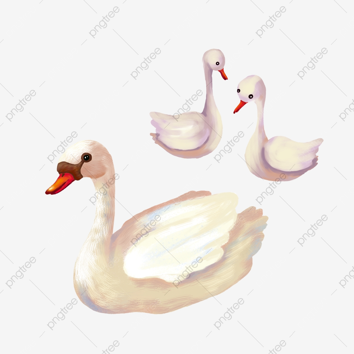 Duckling clipart swan. Pond ugly three beautiful
