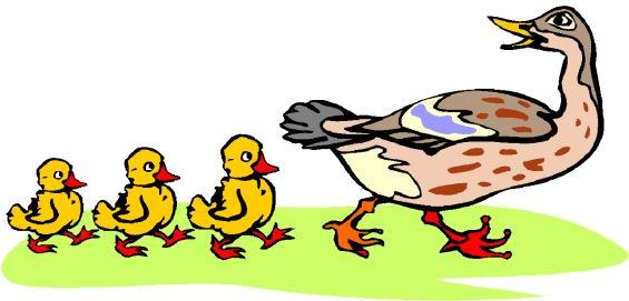 Ducks clipart. Clip art farm picgifs