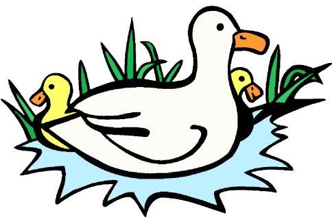 Clip art farm picgifs. Ducks clipart
