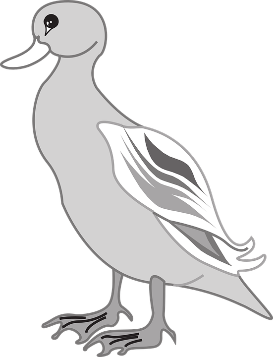 Ducks clipart border. Free duck shop of