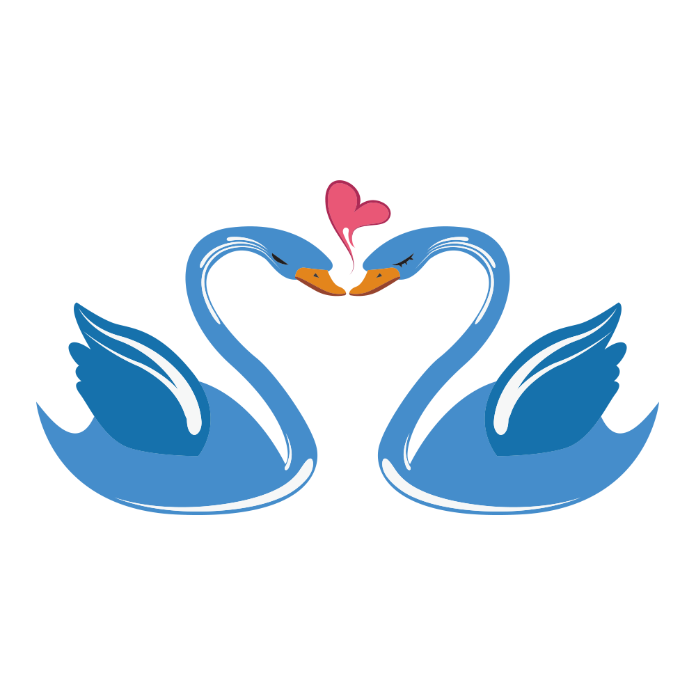 Swan love cartoon transprent. Ducks clipart mandarin duck