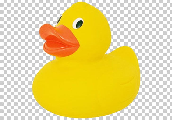Ducks clipart plastic duck. Rubber toy png animals