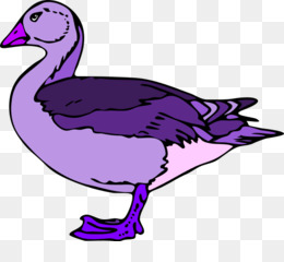 Ducks clipart purple duck. Free download donald baby