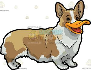 Ducks clipart short animal. A duck dog hybrid