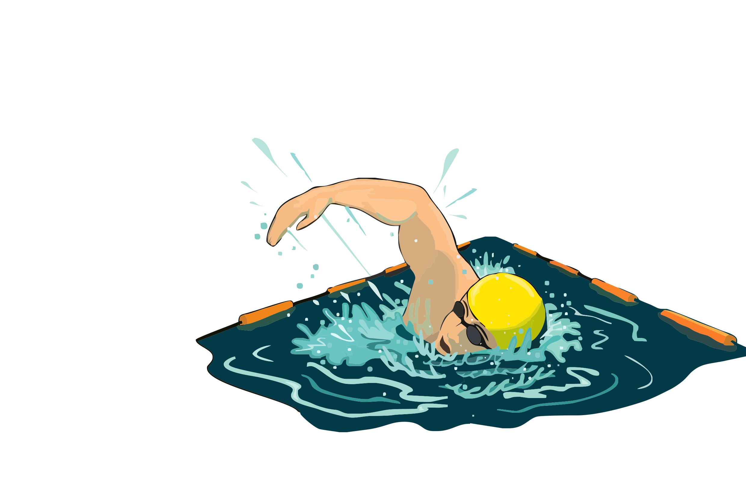 Ducks clipart swimming. Sliding pool friction clip