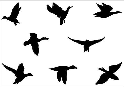 Ducks clipart vector. Flying duck silhouette graphics