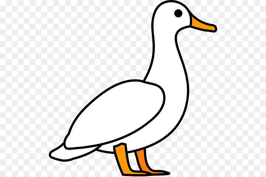 Ducks clipart water outline. Bird line art duck