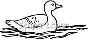 Ducks clipart water outline. Wildlife images of a