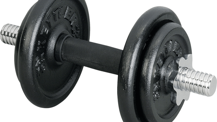 Index of wp content. Dumbbell clipart bench press bar