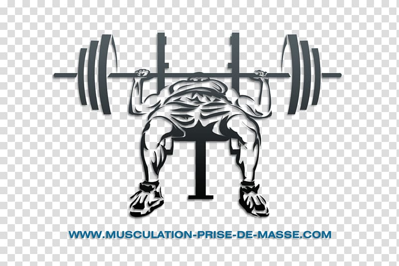 Dumbbell clipart bench press bar. Power rack smith machine