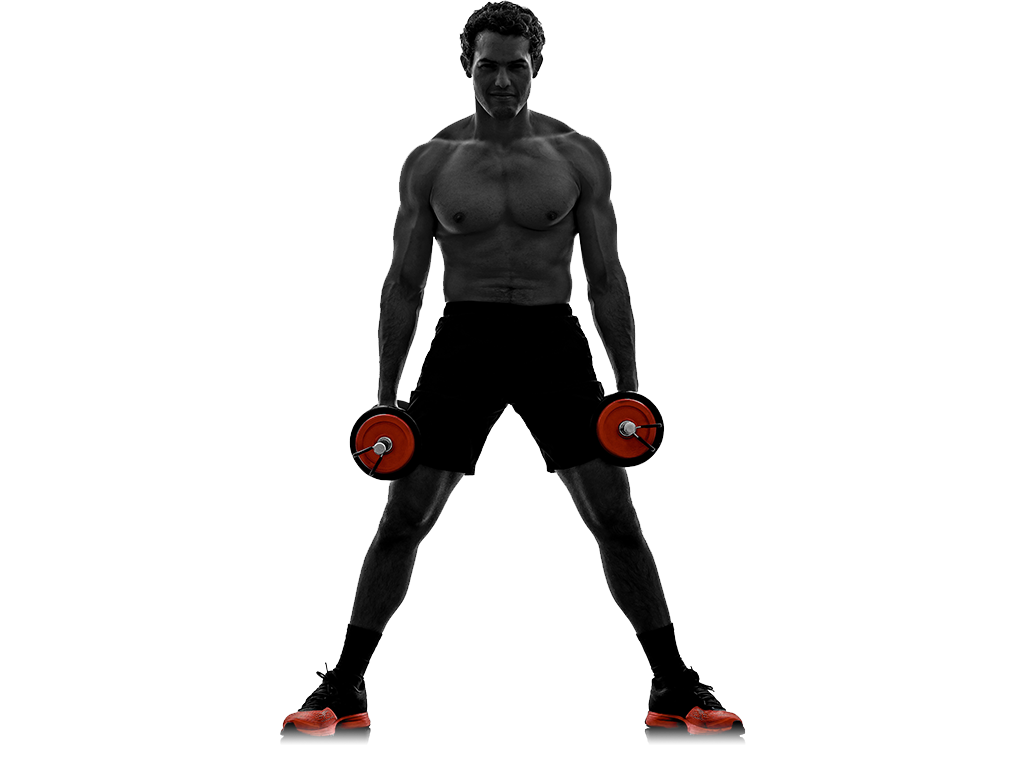 Usi weston florida fitness. Dumbbell clipart exercise science