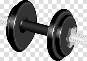 Line angle transparent background. Dumbbell clipart exercise science