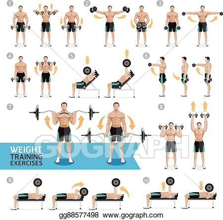Dumbbells clipart excersize. Vector illustration dumbbell exercises