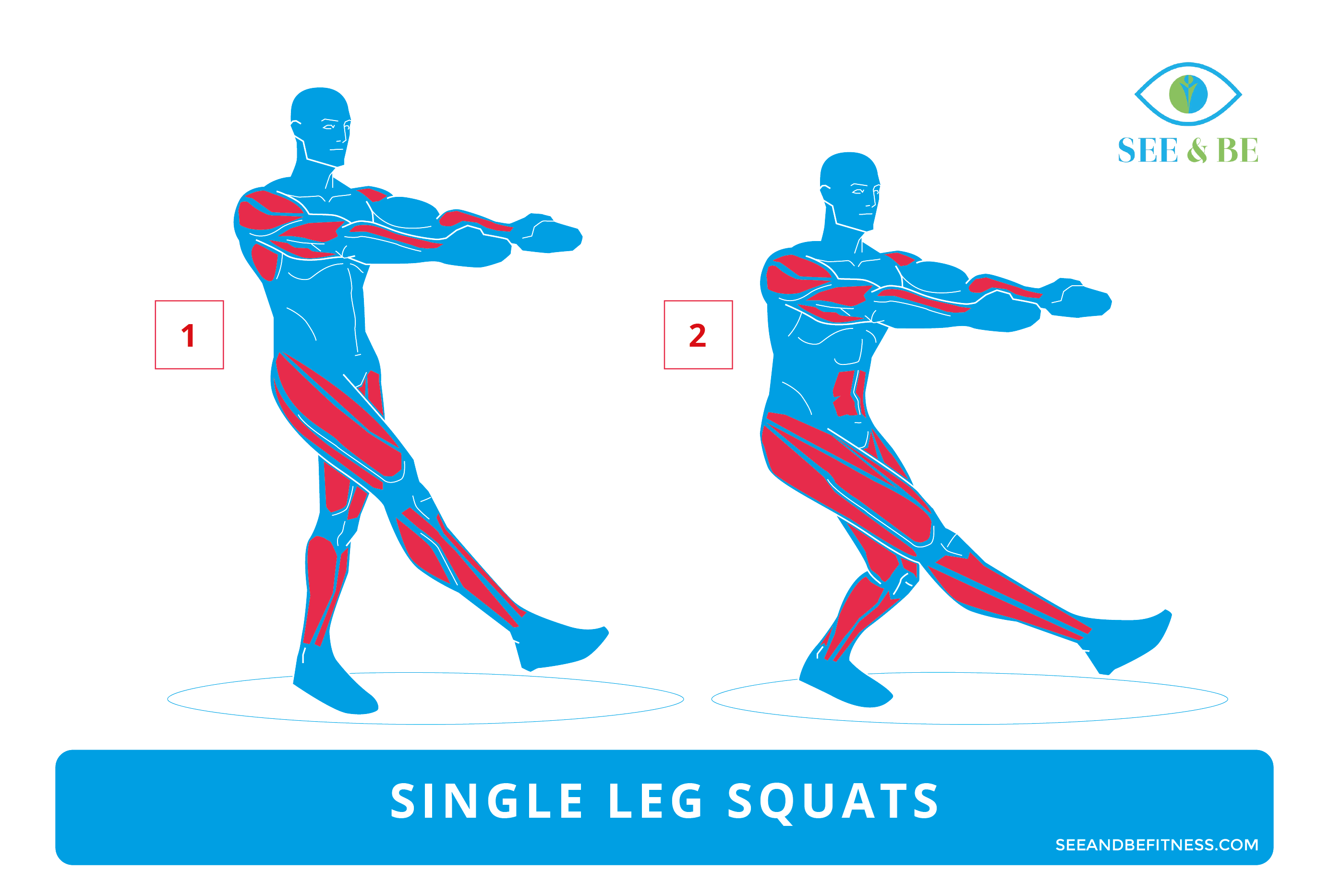 Single leg squats see. Fitness clipart plank