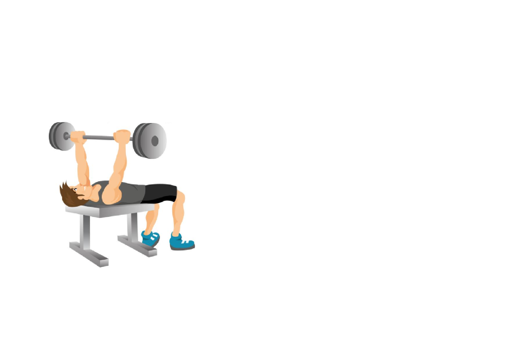 Dumbbells clipart weight bench. Gym fitness full workout