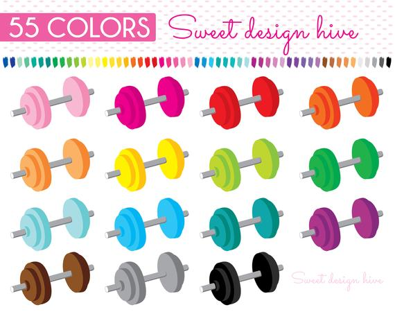 Weights fitness sports workout. Dumbbell clipart gym accessory