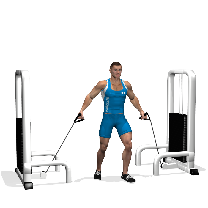 Exercise clipart muscle. Low cable crossover involved