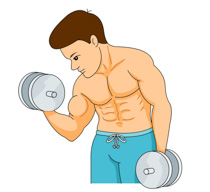Dumbbells clipart excersize. Search results for dumbbell