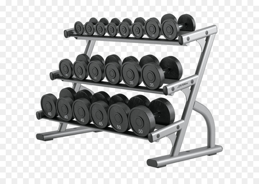 Fitness cartoon exercise product. Dumbbells clipart weight rack