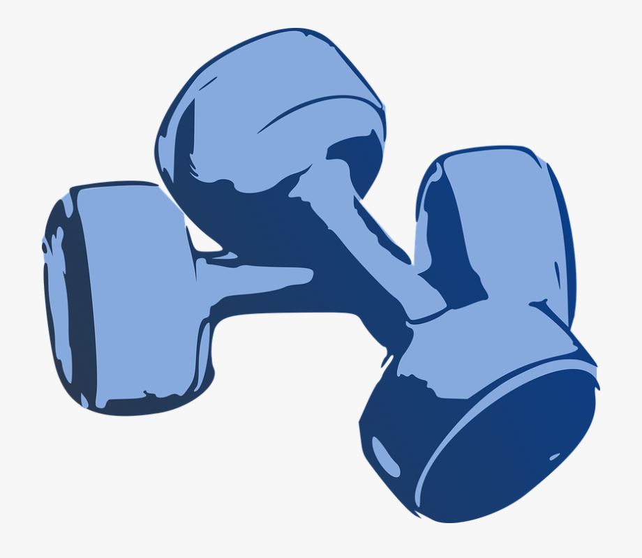 Dumbbell clipart workout gear. Free cliparts on clipartwiki