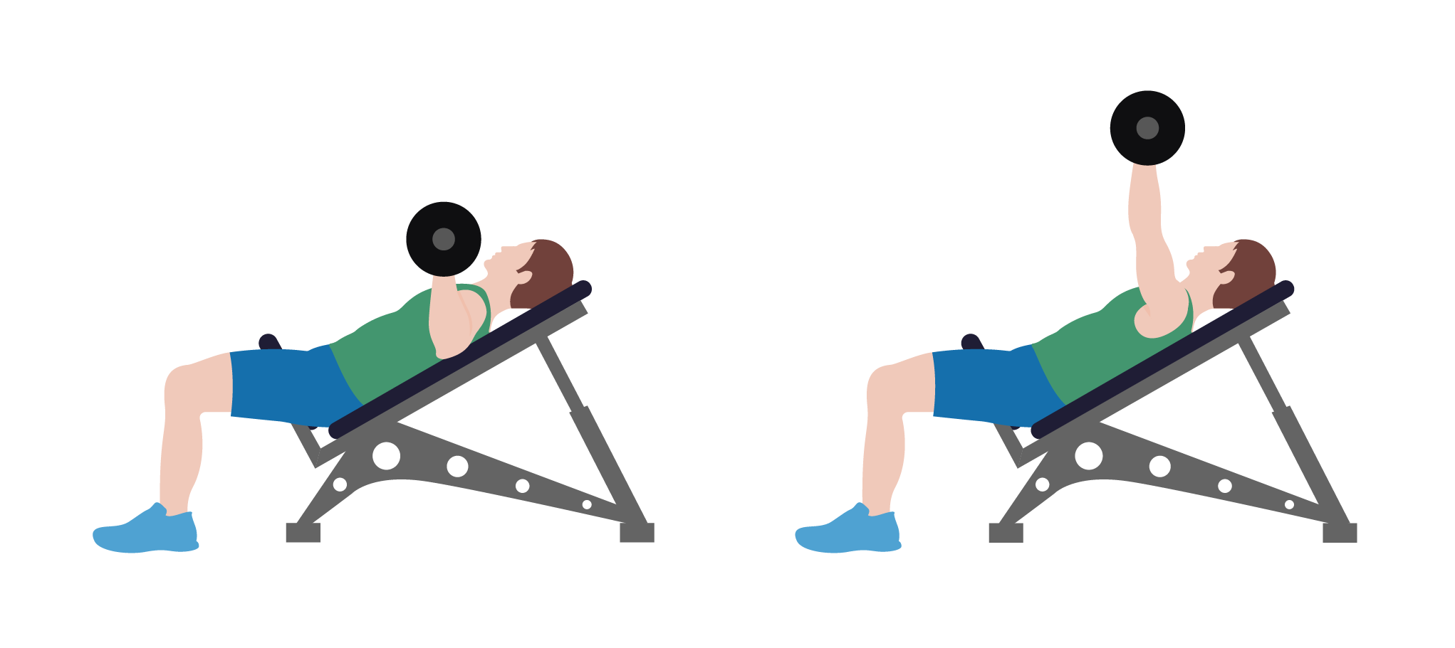 Dumbbells clipart bench press bar. The ultimate guide to