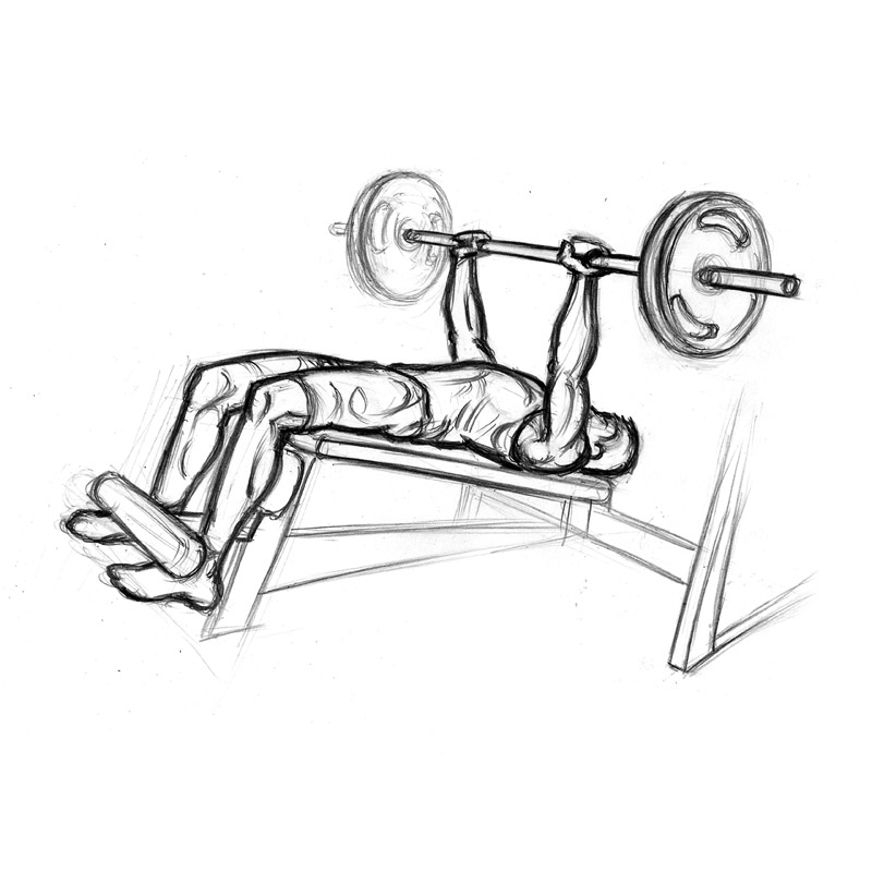 Decline chest exercise with. Dumbbells clipart bench press bar