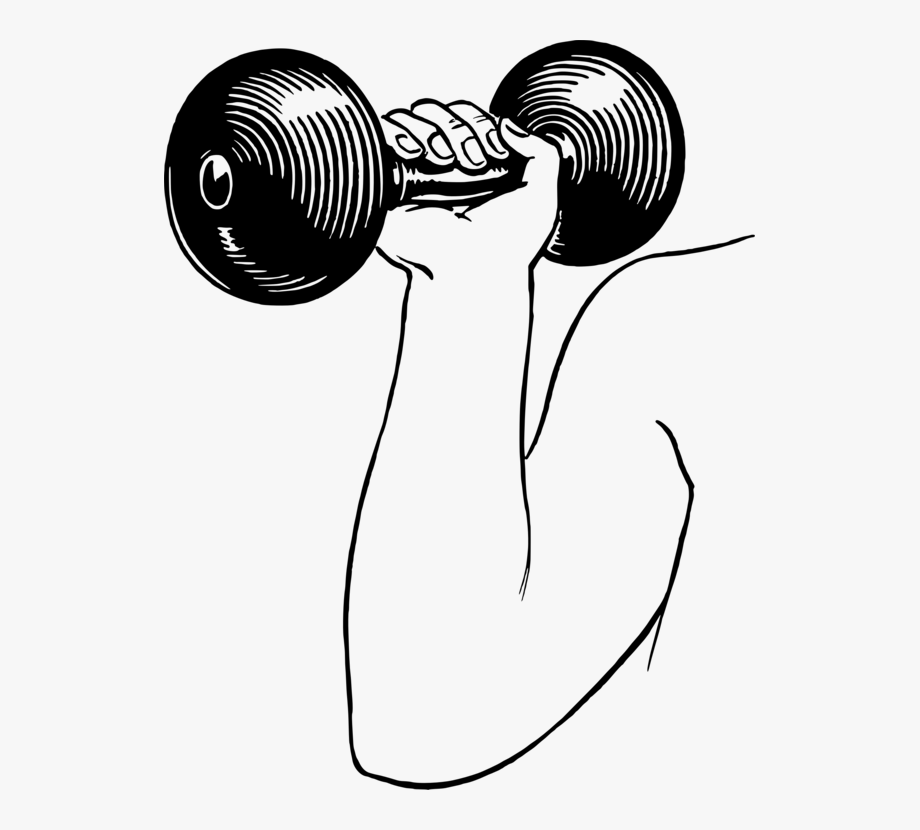 Dumbbell weight olympic weightlifting. Dumbbells clipart resistance training