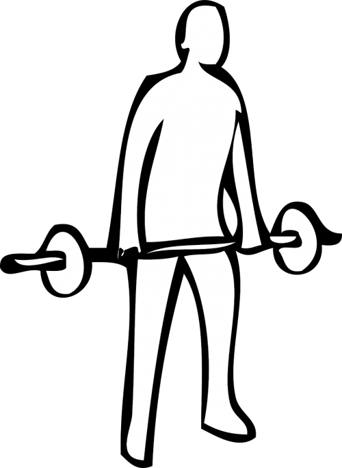 Weightlifting fitness exercise training. Dumbbells clipart weight lifting
