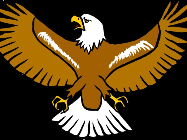 Eagle clipart.  huge freebie download