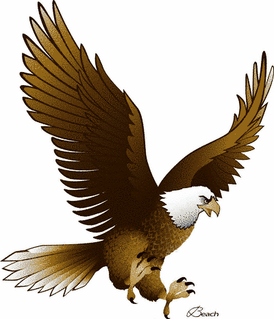 Animals clipart eagle. Clip art free images