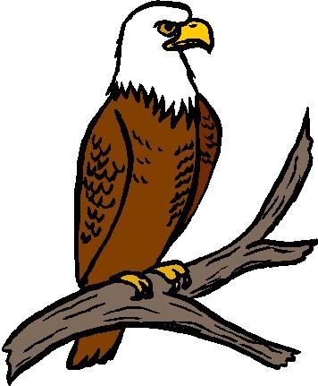 Eagle clipart. Free cliparts download clip