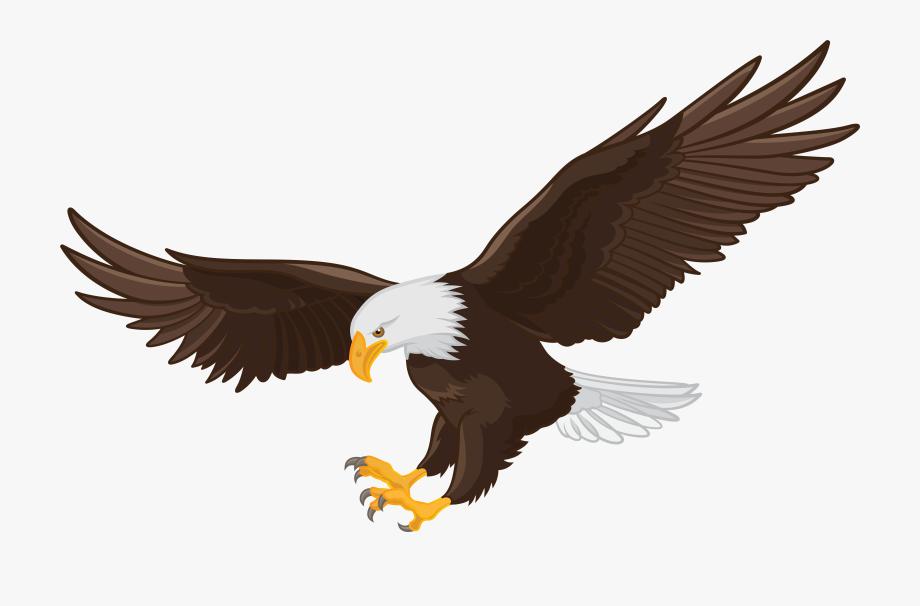 Bald clip art png. Eagle clipart