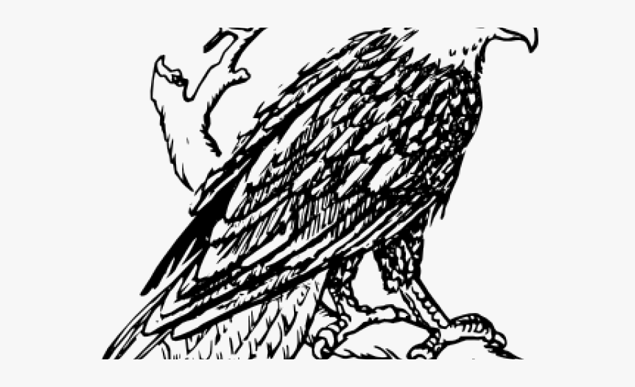 Pictures of bald free. Eagles clipart black and white