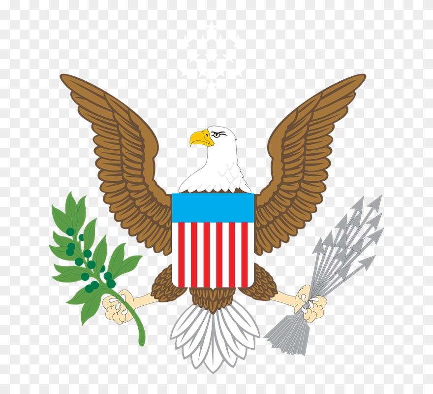 eagle clipart bold eagle