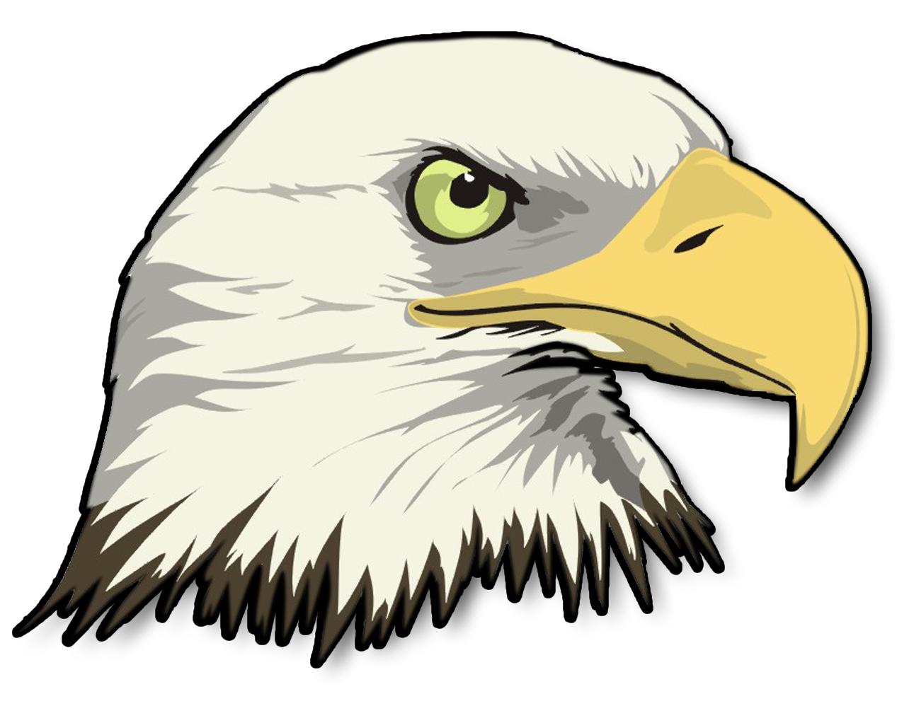 Cartoon bald clipartix . Eagle clipart bold eagle