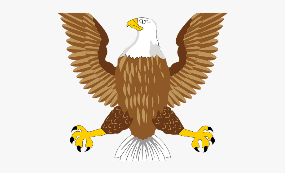 Eagle clipart dead. Golden usa bald symbol