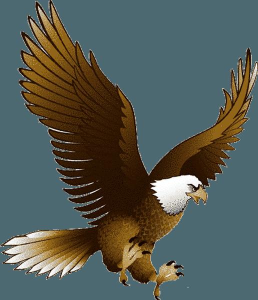 Eagle clipart desert eagle. Hq png transparent images