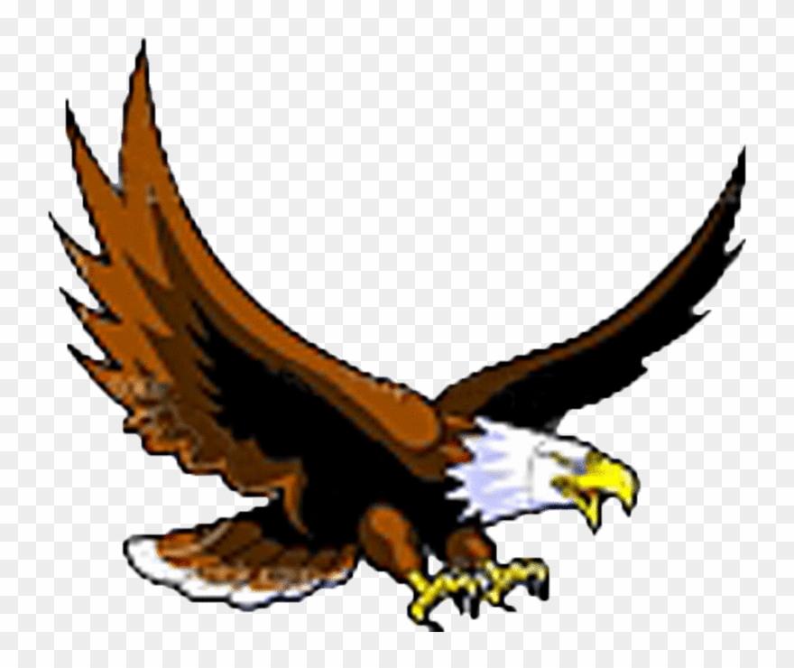 Download clip art bald. Eagle clipart eagle flying