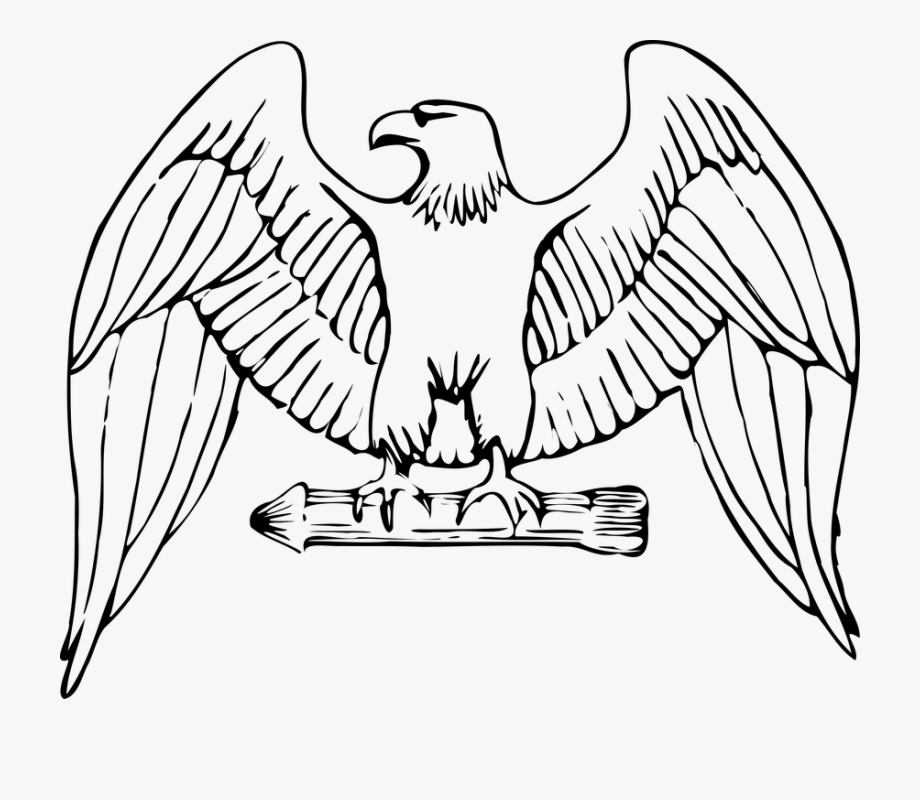 Eagle clipart easy. To draw free cliparts