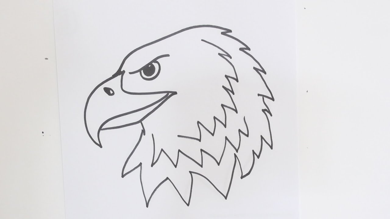 Eagle clipart easy. How to draw an