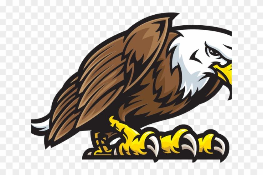 Bald eagle free eagle clip art pictures 10 - Clipartix