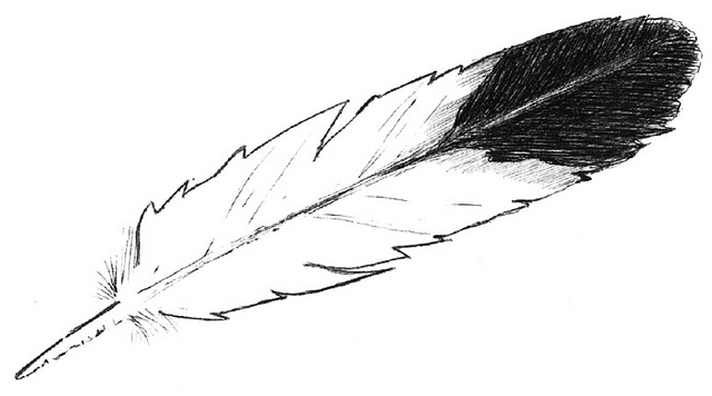 Free silhouette download clip. Feather clipart eagle feather