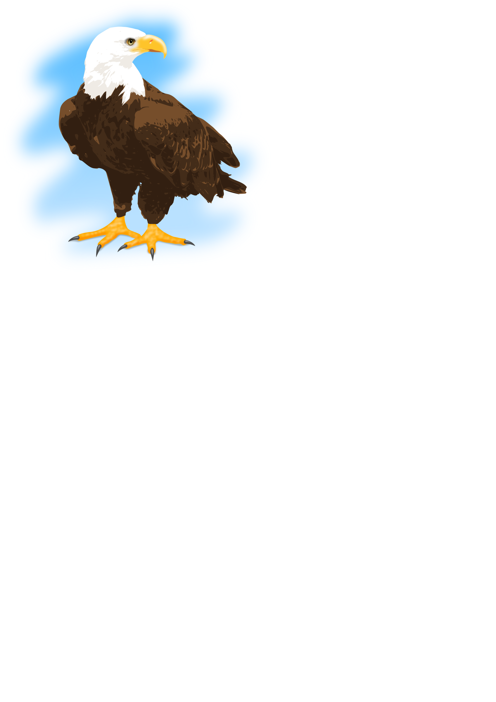 Eagle clipart feather.